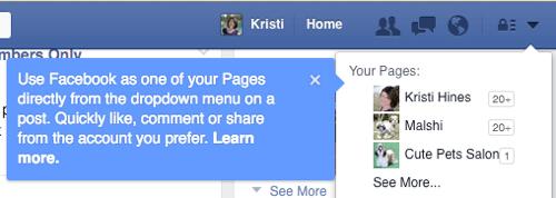 Facebook ci avvisa della rimozione dell'opzione dal menu