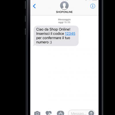 1.SMS-service