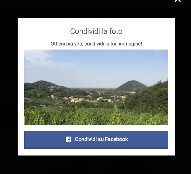 Condivisione foto - fotocontest