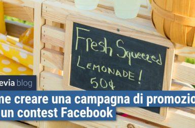 campagna ads facebook Twitter