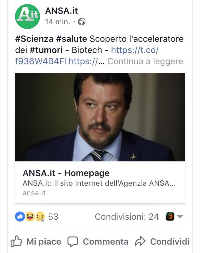 win fail social media marketing settembre ansa1