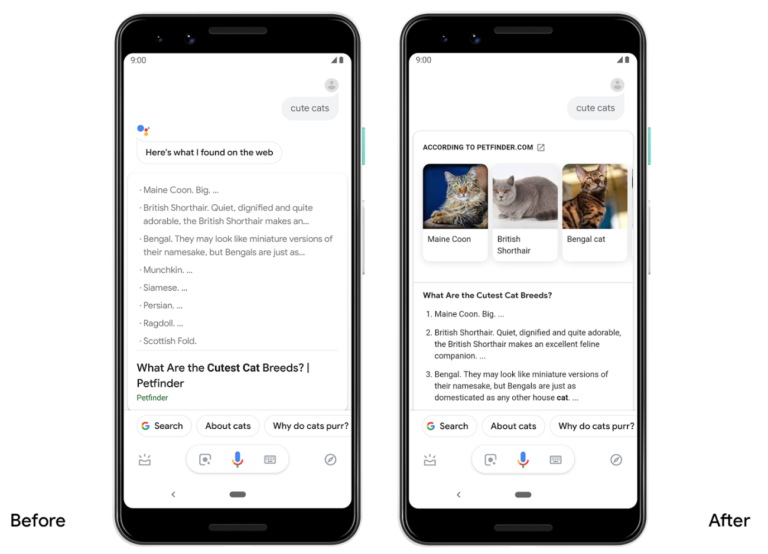 Google Assistant WMR