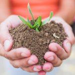 Lead nurturing: cosa fare dopo l'acquisizione email