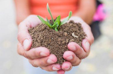 Lead nurturing cosa fare dopo l'acquisizione email Blog Cover
