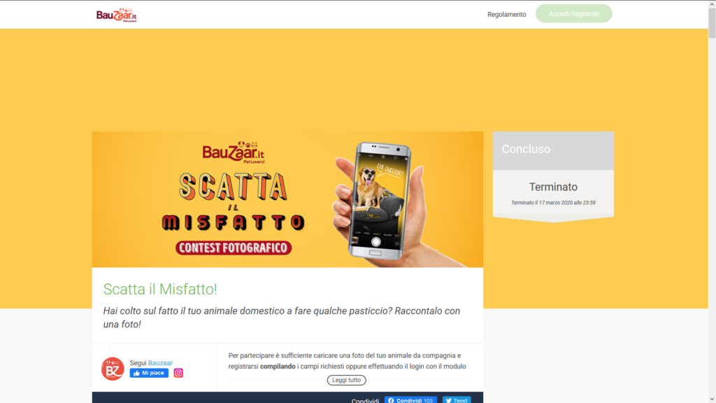 contest online strategie di marketing per il mondo pets