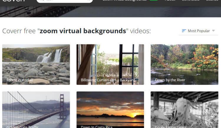 coverr video stock free video gratuiti da scaricare (1)