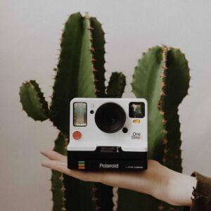 Idee per Instagram Giveaway