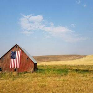 Giveaway in America: come funzionano e cosa cambia rispetto a noi